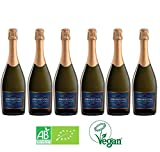 Lot de 6 Proseccos Bio et Vegan Prosecco Extra dry DOC