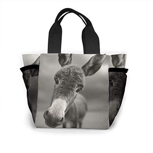 Lunch Bag, Mule Reusable Portable Bento Lunch Tote Bags, Lightweight Handbag for School Outdoor