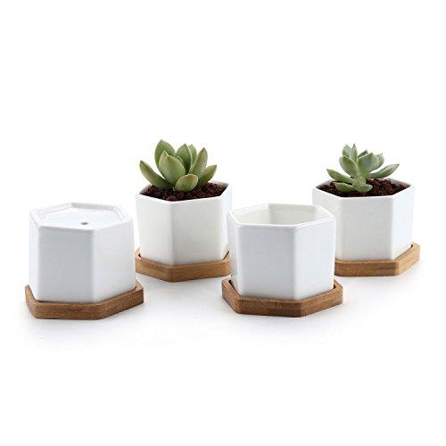 T4U Conjunto de 4 Seis tamaños de cerámica Cerámicos Planta Maceta Suculento Cactus Planta Maceta Planta Contenedor Vivero Maceta Macetas de jardín Macetas Envase