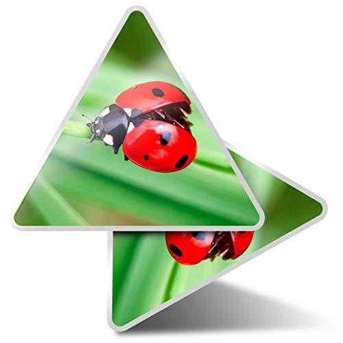 2 pegatinas triangulares de 10 cm – Pretty Ladybug Mariquita Insecto Fun Calcomanías para ordenadores portátiles, tabletas, equipaje, reserva de chatarra, nevera #14303