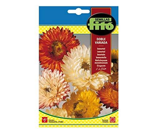 Eurogarden Inmortal Flor de Papel-Siempreviva-2 g Semillas