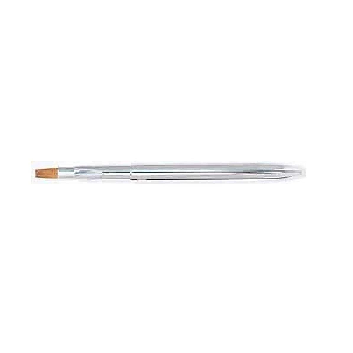 簡単に市区町村抑圧する熊野筆 Ai brush TL-1/携帯用リップブラシ【シルバー】/平
