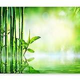 murando Fotomurales 400x280 cm XXL Papel pintado tejido no tejido Decoración de Pared decorativos Murales moderna Diseno Fotográfico Bambu Naturaleza verde b-B-0164-a-a