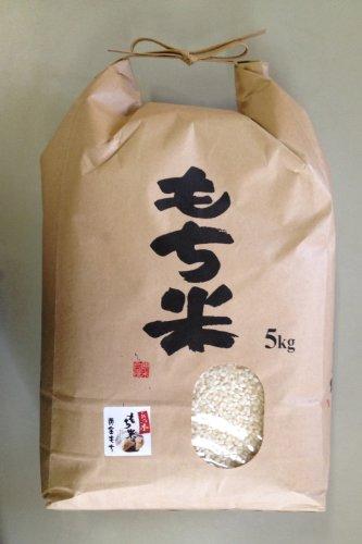 【精米】新潟県産 白米 黄金もち 水稲もち米 5kg 30年産