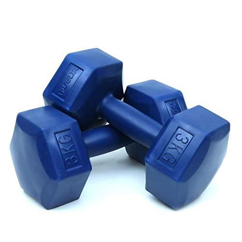 XUEXIU 2 PCS Hexagonal Blue Plastic Dumbbell Barbell Lifting Set 1 2 3 Kg Sports Winter Summer Delta 1kg 2kg 3kg (Color : 2x3 KG)