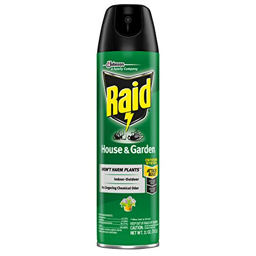 Raid 01672 House & Garden Bug Killer