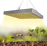 YSSMAO 1000W coltiva la Luce del LED 3500K Grow Indoor Luce della Lampada Spettro Completo per i Semi di Piante ed i Fiori
