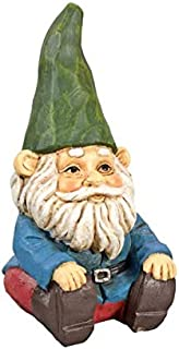 Adorable Garden Gnome with Green Hat, Blue Shirt and Red Pants