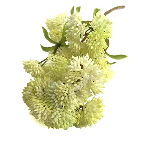 Innendekoration Künstliche Pflanzen 4-Farben-Blumenkohl Mini weichen Kunststoff Tabelle Simulieren Saftiges Obst Getreide for Großhandel mit Zierpflanzen Sechs köpfiger Lebensechte Und Buschige Blätte