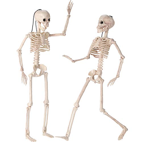BBTO 2 Pack 15.75 Inch Halloween Skeleton, Full Body Posable Halloween Skeleton with Movable Joints for Halloween Decor