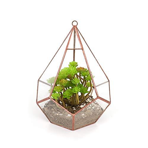 The Fellie Glas Blumentöpfe zum Aufhängen,als Blumentopf für Miniatur-Bonsai,Diamantform Geometrisches Terrarium aus Glas, auch für Sukkulenten(Rotes Kupfer)