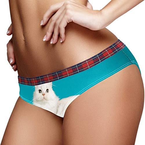 Bennigiry Damen-Unterhose mit schottischem Glatthaar, weiße Katze, weiche Baumwolle Gr. 2 - 4 Jahre old, multi