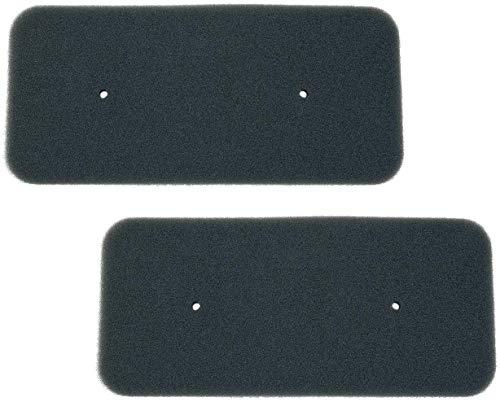 2 x Filtro para secadora Candy® Hoover® filtro de espuma filtro de esponja tamaño 270 x 125 x 7 mm (sustituye 40006731) 2 filtros