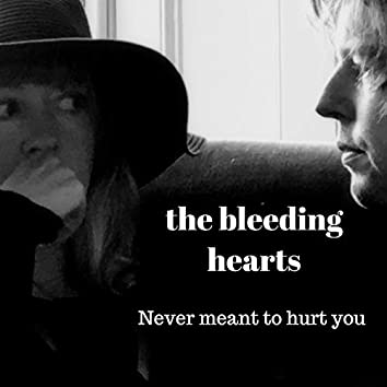 Never meant to hurt you