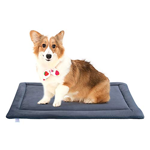 Bravpet Haustier Hundebett Decke Matte wasserdicht Haustier Matte für Hund Katze Indoor Outdoor Rasen verwenden (XXL)