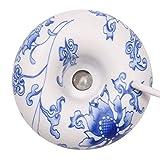 TaoToa Donut Humidificador de Iones Negativos Aroma Esencial Difusor Cross-Border Especial USB Pulverizador de Niebla Azul y Blanco