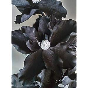 Silk Flower Floral Arrangements. Black Magnolia Wall Decoration Swag. Get 1 – Artificial Flowers #FWB01YN