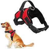 RCruning-EU Perros Pecho de Arnés Mascotas Reflectante Antitranspirante Acolchado Dog Vest Harness Ajustable Arnes Seguridad Chaleco Cabestro para Ejercicio de Caminar Formación Corriendo-Red-XL