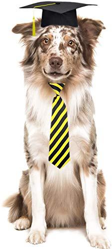 Trasen Pet 3 Pieces Pet Graduation Caps Neck Tie Small Medium Dogs Cats Hats Pet Graduation Costume Accessory Photography Props