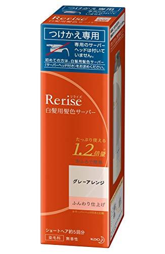 リライズ 髪色サーバー グレーアレンジ ふんわり仕上げ 付替190g [0442]