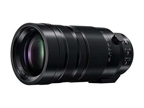 PANASONIC LUMIX G Leica DG Vario-Elmar Professional Lens, 100-400MM, F4.0-6.3 ASPH, MIRRORLESS Micro Four Thirds, Power Optical I.S, H-RS100400 (USA Black)