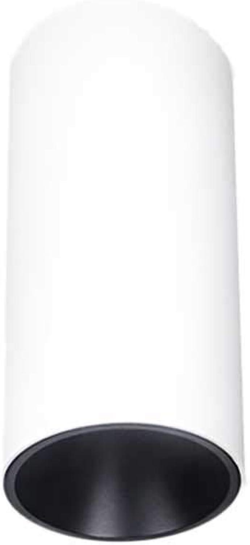 Downlight-Strahler eingebettet schmaler Rand Wohnzimmer LED-Deckenleuchte Downlight mit hoher Zeigerblende (Farbe   Weiß light-12w)
