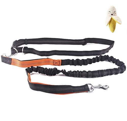 HOUSN Adjustable Waist Belt Dog Leash 6 ft Stretch to 7.5 ft Small Medium and Large Dogs Universal, Reflective Stitches, Best Choice for Running Walking Jogging Training Hiking