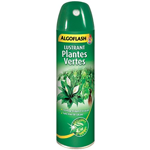 ALGOFLASH Lustrant Plantes Vertes, Brillance et éclat, Prêt à l'emploi, 250 mL, APOLI