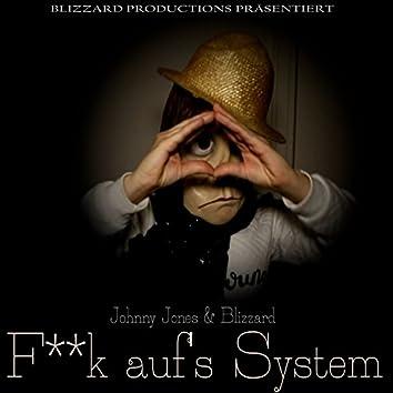 Fick auf's System