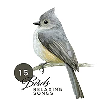 15 Birds Relaxing Songs: New Age Ambient Nature Music 2019, Songs for Total Relax at Home or Spa, Beautiful Sounds of Birds, Forest, Wind & Other, Soothing Melodies Played on Guitar & Piano