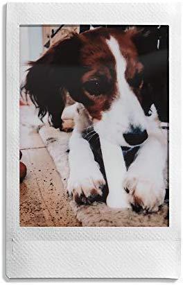 Fuji 96090 Instax Mini Instant Film, 10 Sheet, 5 Piece