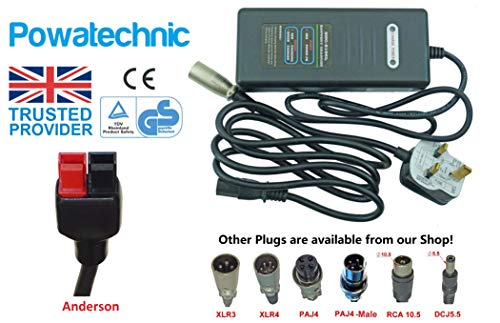 Powatechnic Cargador de batería de Litio de 24V-29.4V 2A para Bicicletas eléctricas, Scooters, sillas de Ruedas y más! (Anderson)