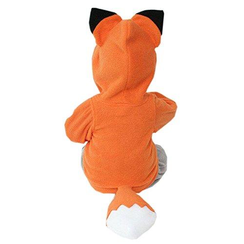 OVERDOSE Kind-Jungen-Mädchen-Karikatur-Entwurf Fox Hoodie-Jacken-Outwear-Mäntel 0.5-3 Jahre alt (2-3Jahre alt, A-Orange)