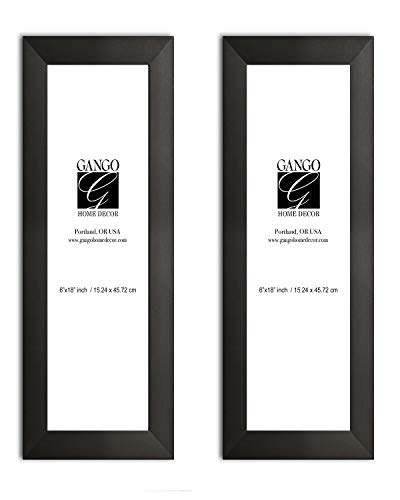 Gango Home Décor Two 6x18in Black Frame Set; Ready to Hang!