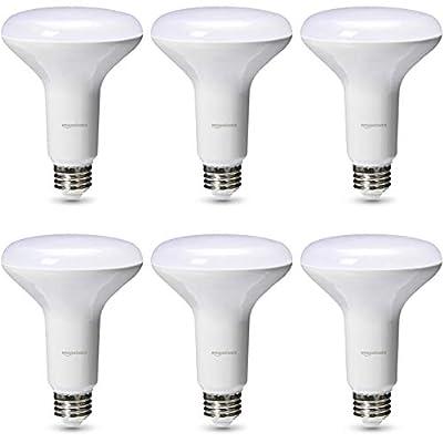 AmazonBasics LED Light Bulb