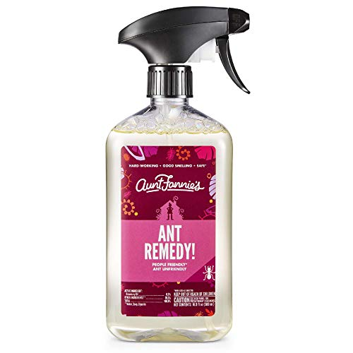 Aunt Fannie's Ant Remedy, Ant Killer Spray for Indoor Use (Single)