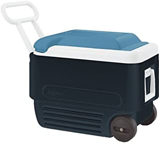 Amazon.es: Igloo Coolers Europe Official - Neveras / Cocina ...