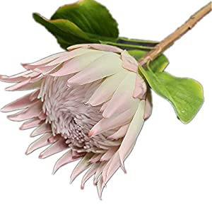 2pcs Artificial Big Protea Cynaroides Simulation Pitaya Flower Stem for Wedding Home Decorative Artificial Flowers (Champagne Pink)