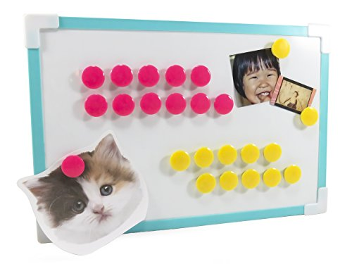Small Round Dot Magnets Refrigerator Filing Cabinet Whiteboard .75 x .75 Neon Yellow Pink (Pack of 24)