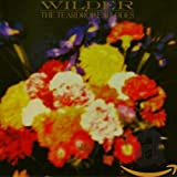 Songtexte von The Teardrop Explodes - Wilder