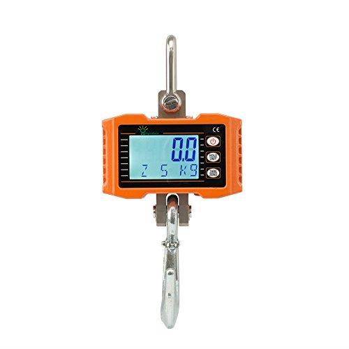 Hyindoor Peson Électronique 1000 kg /2000 lb de Industrielle Balance à Grue Numérique à Crochet