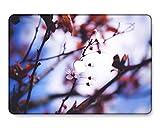 GangdaoCase Carcasa rígida de plástico ultra delgada para MacBook Pro de 13 pulgadas Retina Display No CD-ROM A1425/A1502 (serie rosa 0502)