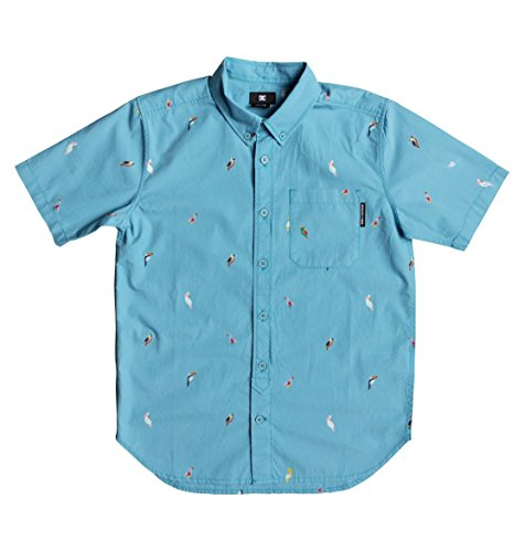 DC Shoes Hepscott - Camisa de Manga Corta para Niños 8-16 EDBWT03040