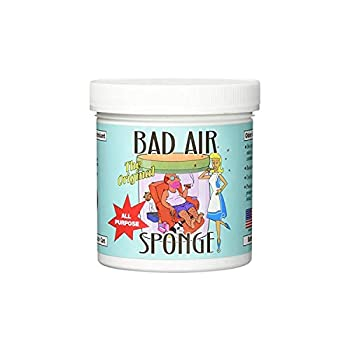 ✅️ How to Get Rid of Dead Rat Smell Effectively - Step-By-Step Guide
