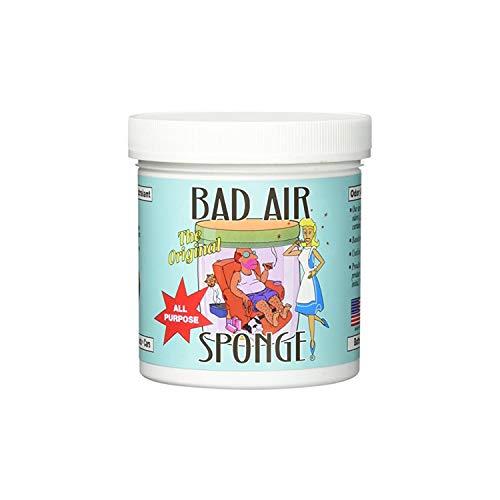 The ORIGINAL Bad Air Sponge Odor Absorbing Neutralant, 14oz(Packaging May Vary)