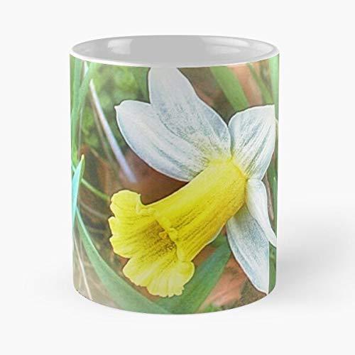 92Novafashion Flower Spring Daffodil Easter La Mejor Taza de café de cerámica de mármol Blanco de 11 oz