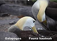 Galapagos. Fauna hautnah (Wandkalender 2022 DIN A2 quer): Die einzigartige Tierwelt auf Galapagos wird aus naechster Naehe gezeigt. (Monatskalender, 14 Seiten )