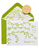 Papyrus Boxed Thank You Cards with Envelopes, Branches (20-Count)