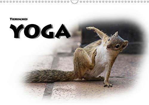 Tierisches Yoga (Wandkalender 2021 DIN A3 quer)