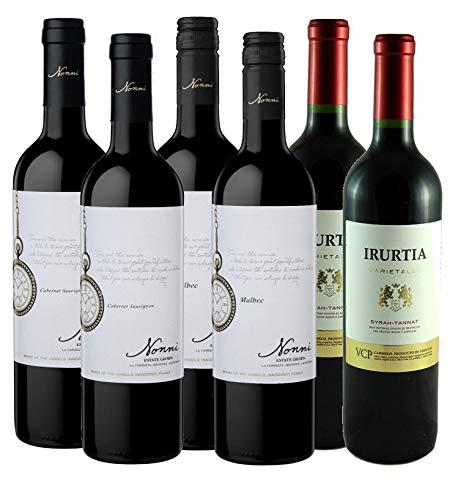 Atlantik Weine, Südamerika Einstiegspaket mit Rotwein aus Argentinien und Uruguay, Weinpaket mit Malbec Cabernet Sauvignon Syrah und Tannat (6 x 0,75l)